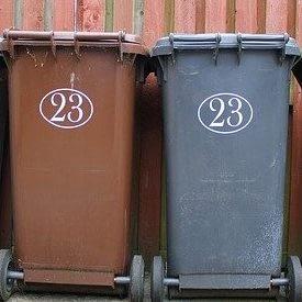 bin cleaning